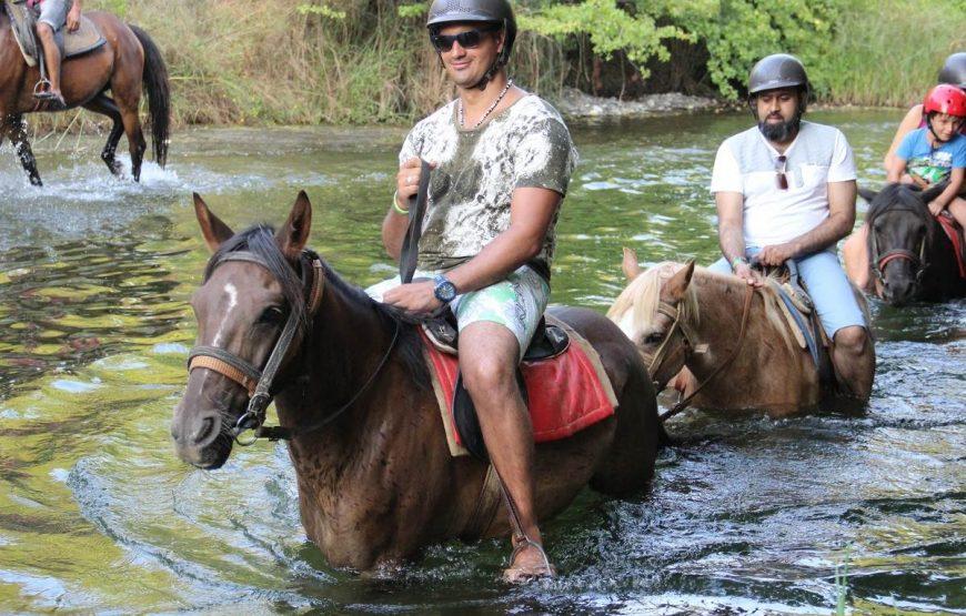 Marmaris Horse Riding Tour